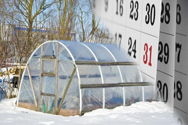 Gemüsegarten im Jänner