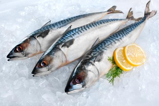 Frischen Fisch erkennen