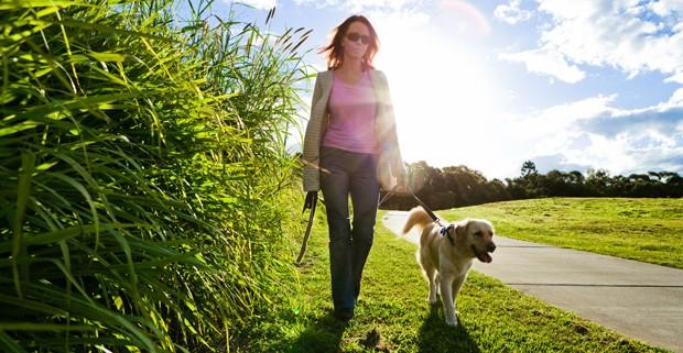 Mit dem Hund spazieren gehen