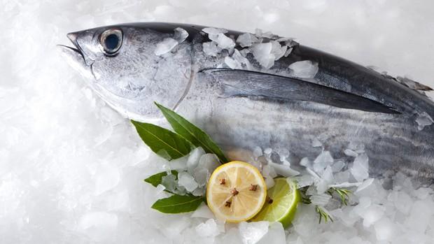 Fisch richtig einfrieren