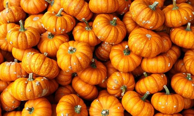 Mandarin - Speisekürbis