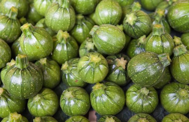 Tondo Chiaro di Nizza - Tondo Zucchini