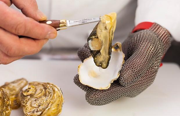 Austern öffnen - so einfach funktionierts