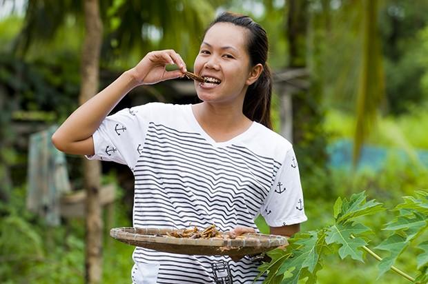In vielen asiatischen Ländern stehen Insekten schon seit Menschengedenken auf den Speiseplan.