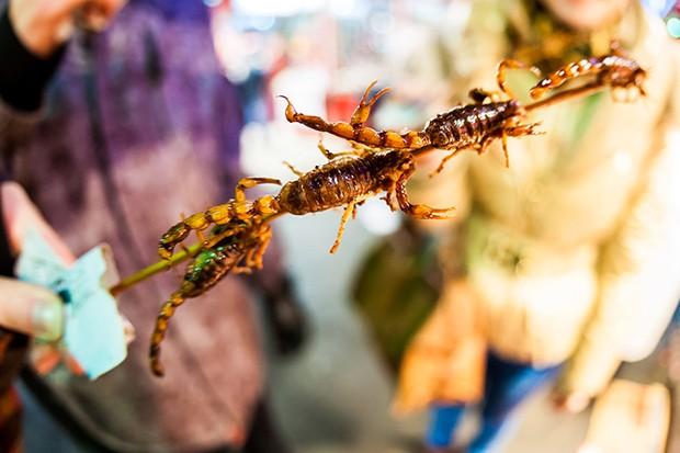 In China gelten sogar frittierte Skorpione am Spieß als eine Delikatesse.