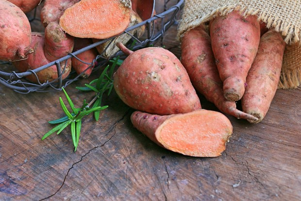Gesunde Süßkartoffel