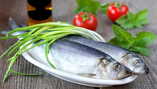 Gesunder Fisch