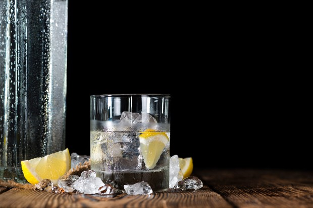 Gin Basics