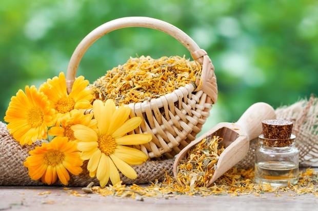 Heilwirkung der Ringelblume
