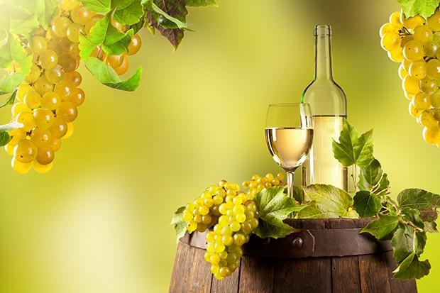 Weinherstellung - ein Überblick