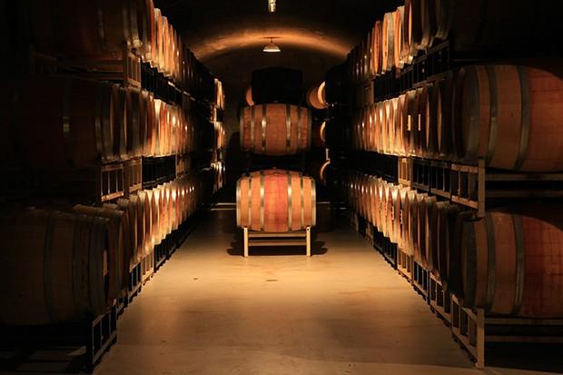 Die Gärung in Weinfässer