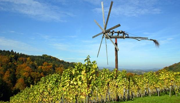 Weinregion Südsteiermark