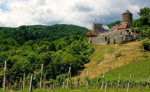 Weinregion Weststeiermark