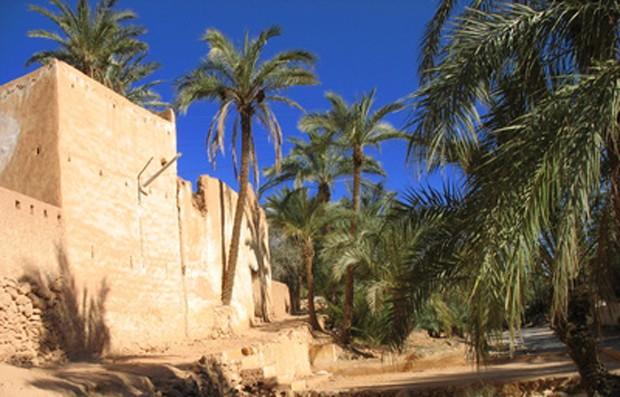 Weinland Algerien