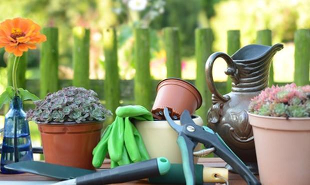 Gartenarbeit als Hobby