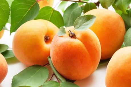 marillen-oder-aprikosen-aphrodisiaka-aus-china.jpg