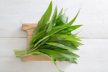 baerlauch-gruen-aromatisch-scharf-und-gesund.jpg