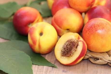 nektarinen.jpg