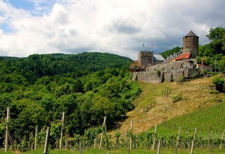 weinregion-weststeiermark.jpg