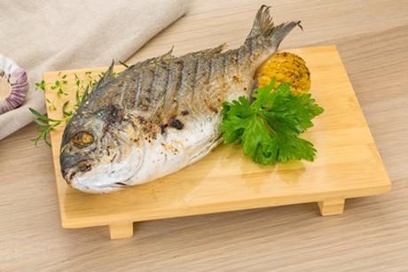 fisch-gesund-und-gut.jpg
