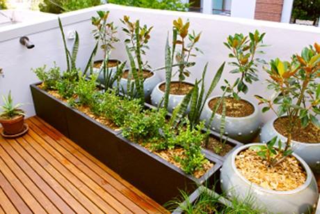 balkon-terrasse.jpg