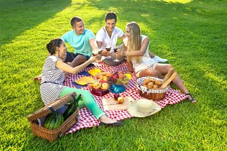 picknick-mit-fruehlingshaften-genuessen.jpg