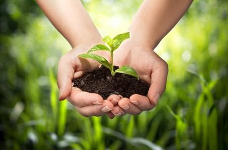 nachhaltig-essen.jpg