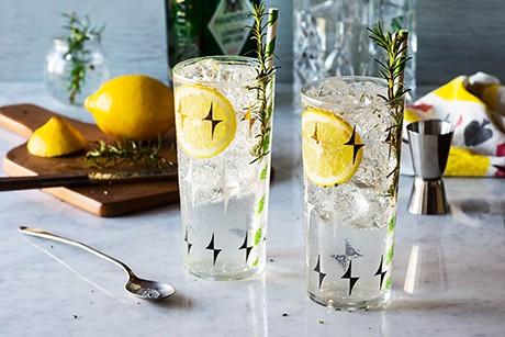 gin-fizz-der-allrounder.png