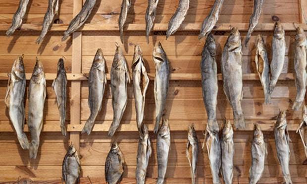 schwedischer Stockfisch