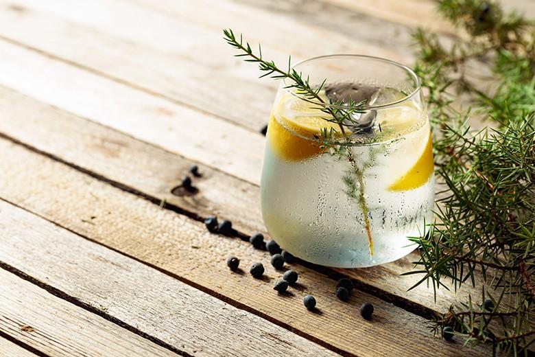 Top 10 Cocktails mit Gin