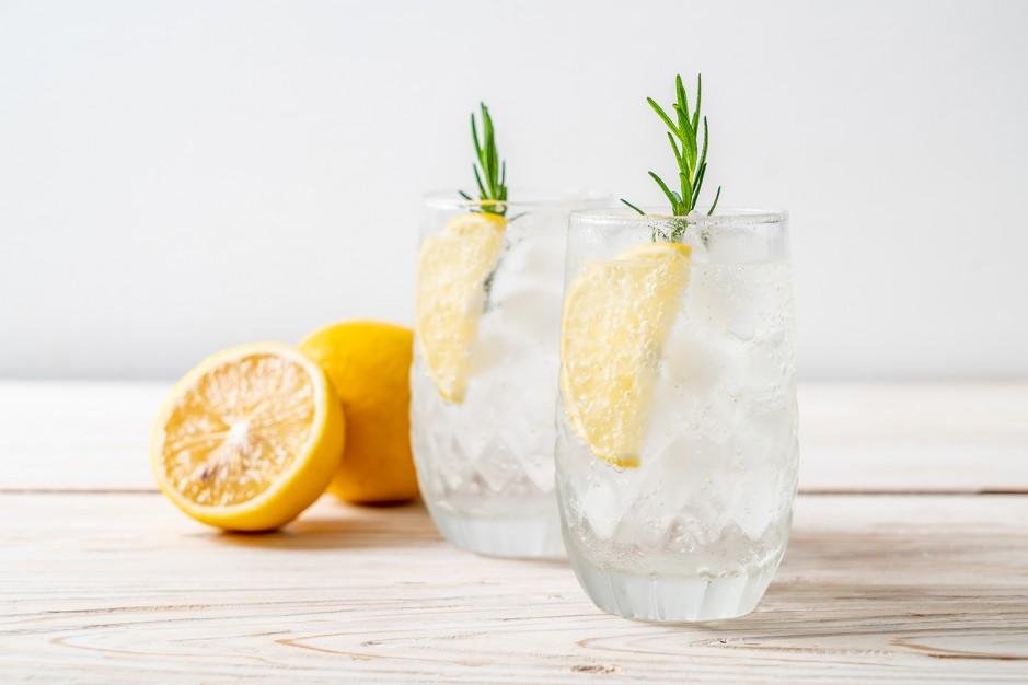 Top Gin Rezepte