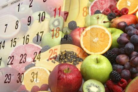 saisonkalender.jpg