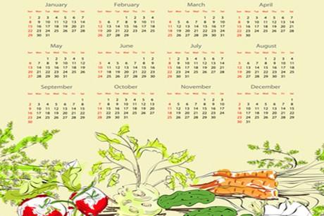 gemuesegarten-kalender.jpg