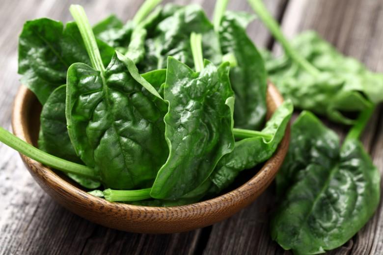 spinat-rezepte.jpg