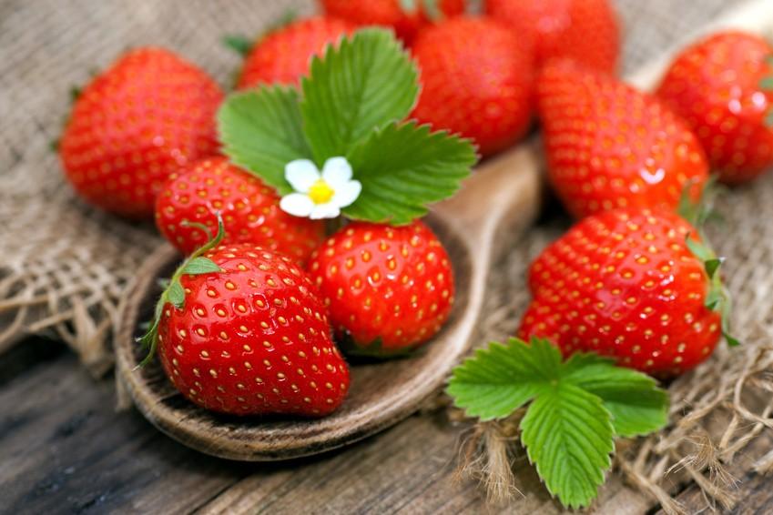 erdbeer-rezepte.jpg