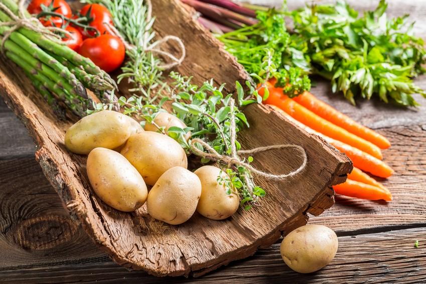 vegetarische-rezepte.jpg