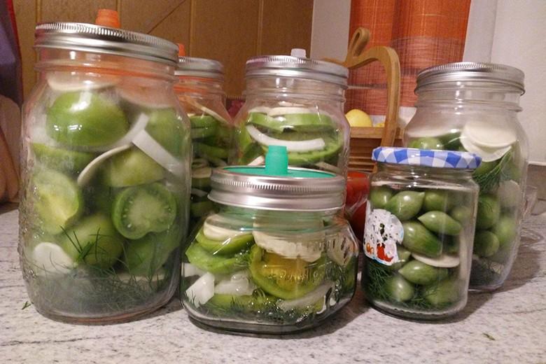 Grüne Tomaten einlegen