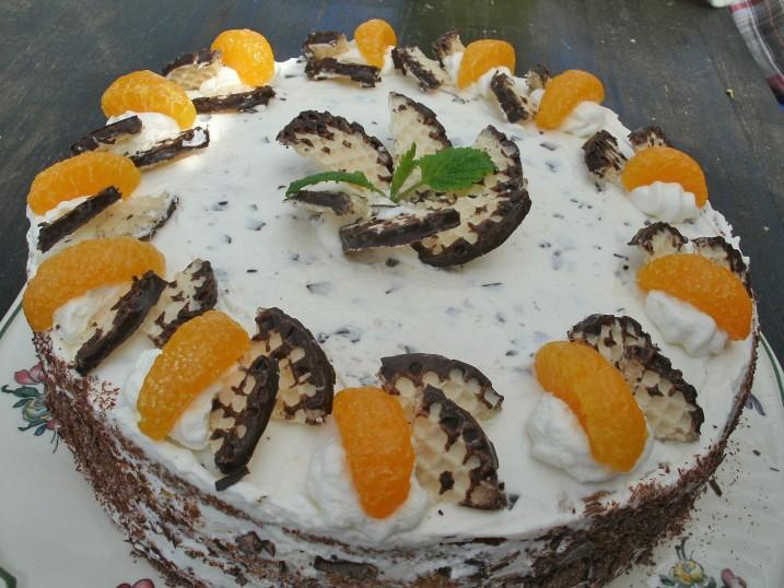 fruchtige-schokokuss-torte.jpg