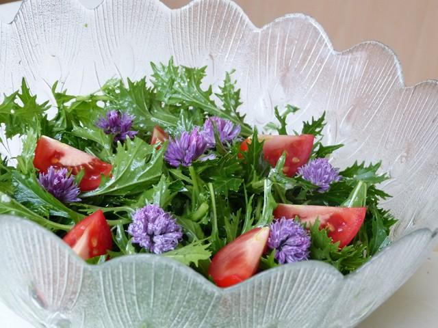 asia-salat.jpg