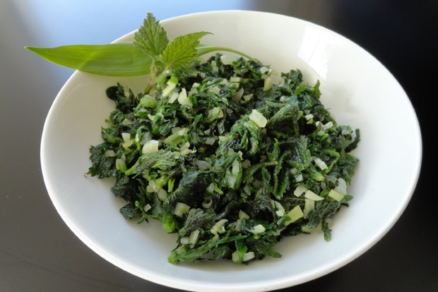 Bärlauch-Brennnessel-Gemüse