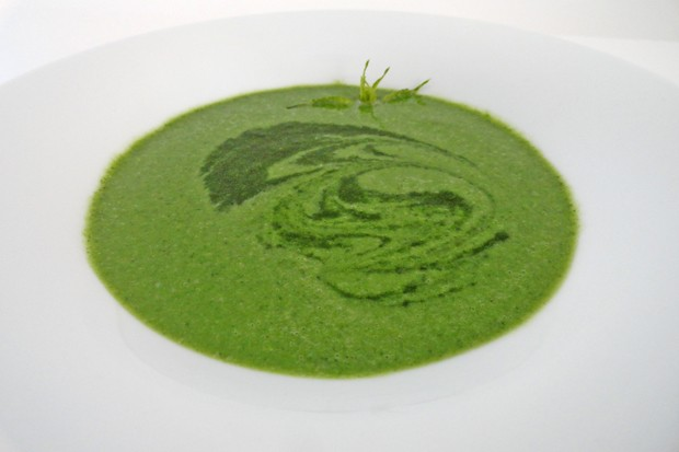 Brennesselsuppe