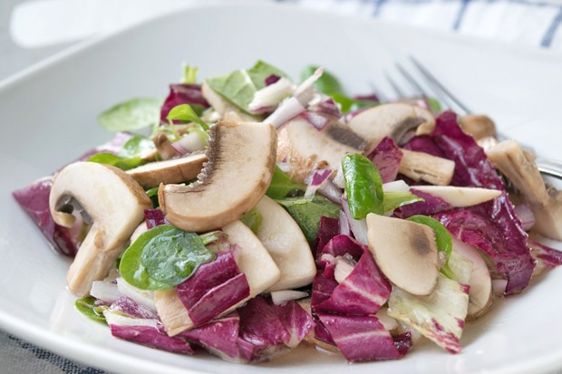 Radicchiosalat mit Pilzen