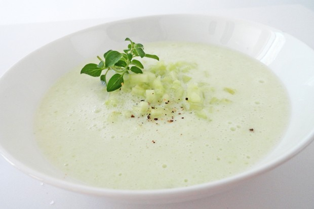 Gurken-Buttermilch-Suppe mit Honig