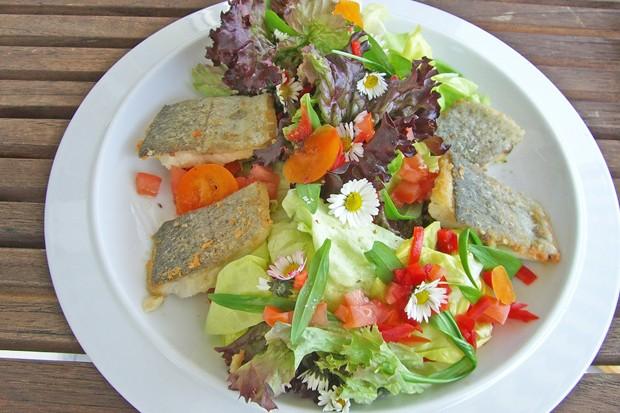 Salat mit Fischfilet