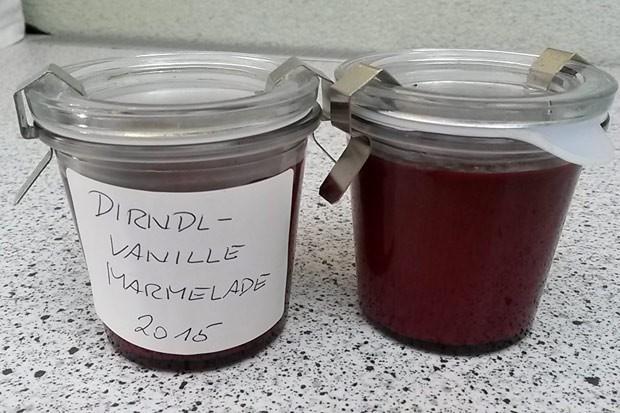 Dirndl-Vanille-Marmelade