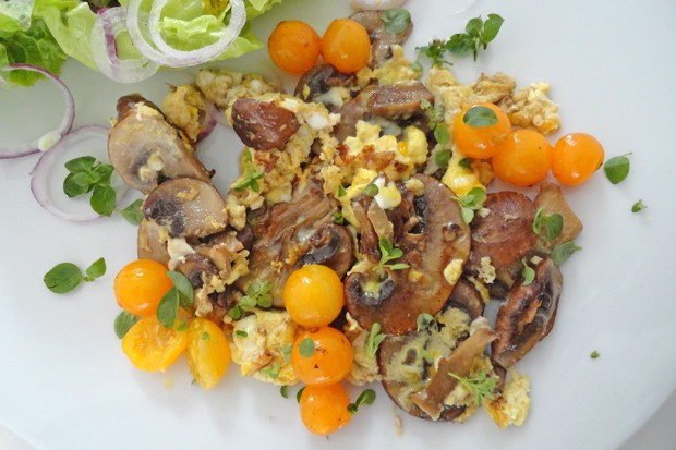 Rührei mit Champignons und Tomaten