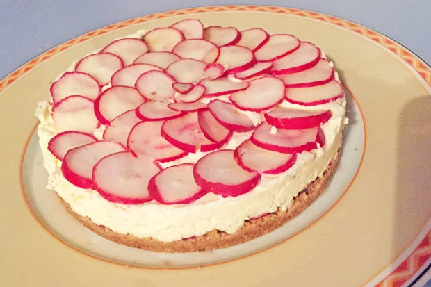 Pikanter Radieschen-Cheesecake mit Brunch Frischkäse ohne Backen