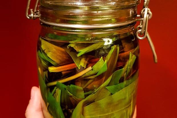 Bärlauch in Olivenöl eingelegt