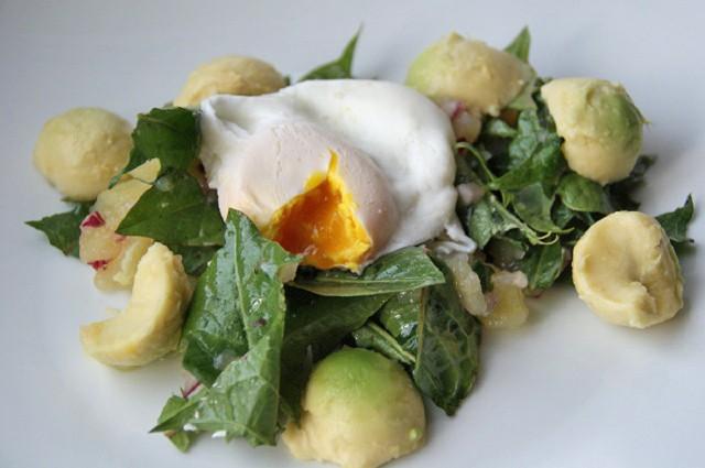 salat-aus-kartoffeln-loewenzahn-und-avocado.jpg