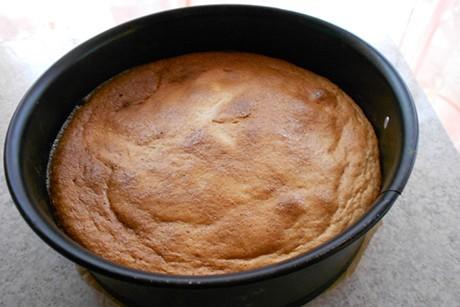 biskuit-tortenboden-mit-honig.jpg